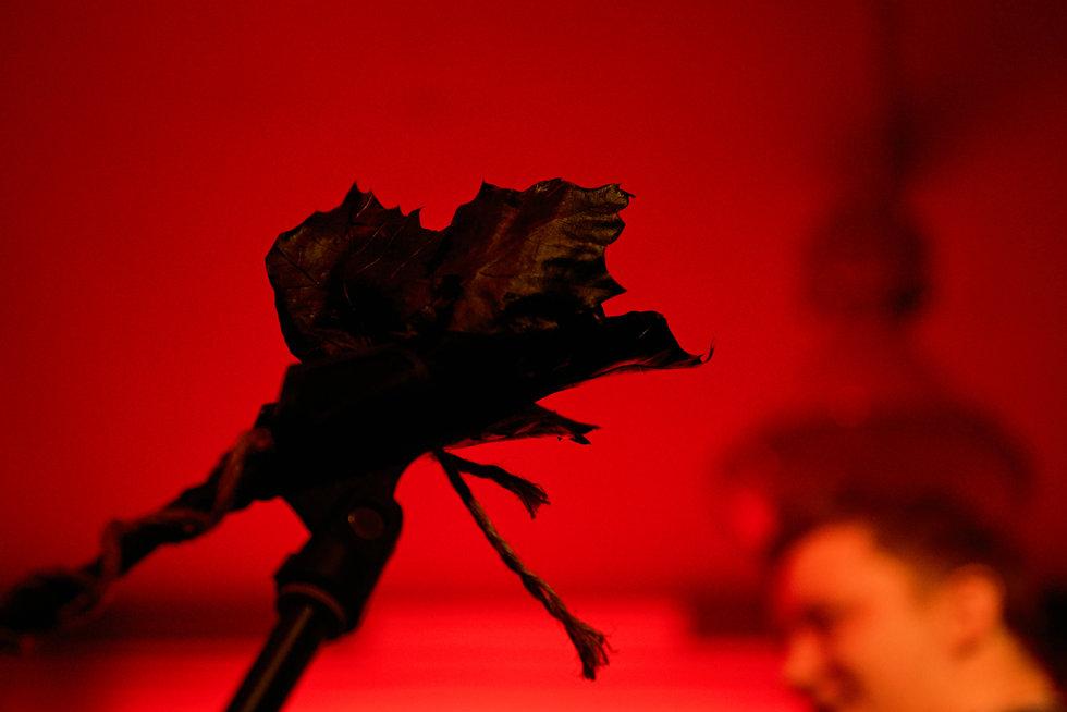 194 Czarne Kwiaty horz