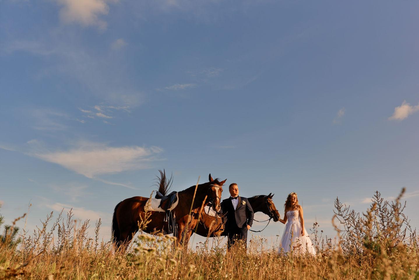 sesja ślubna stajnia